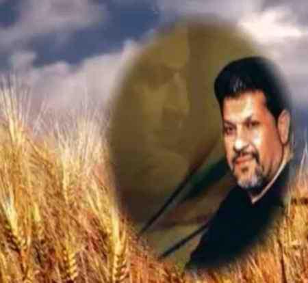 دانلود آهنگ سلطان منی سعید خوانساری